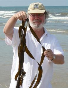 Braunalge mit Jürgen Marek am Strand